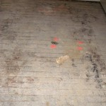 Project E: Some damaged hardwood floors